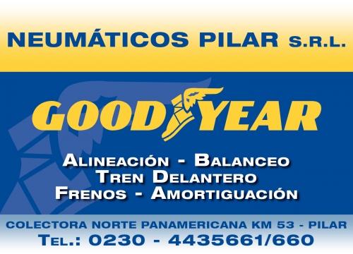 Neumáticos Pilar